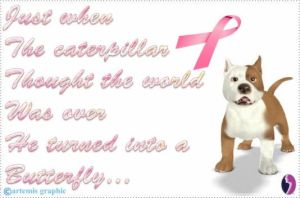 Quote - Breast Cancer - Foopets by Lost-At-Sea722