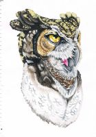 horned owl portrait by Inspired-By-Boredom