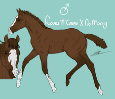 Foal Loves 'N' Creme X No Mercy by RisingAngelss