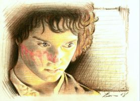 Frodo by BenCurtis
