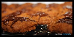 Chocolate Munchies 6 by munchinees
