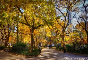 East Coast Fall in NYC by KasraRassouli