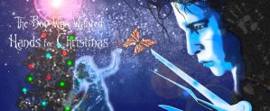 The Boy Who Wanted Hands for Christmas II by SumtimesIplaytheFool