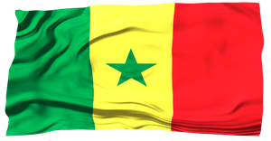 Flags of the World: Senegal by MrAngryDog