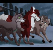 Wolf Pack by kohu-arts