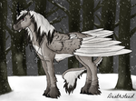 Winter Night by Deathsteed