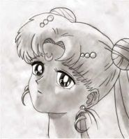 Princess Serenity by Angel-of-the-Starz