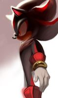 Shadow02 by Shira-hedgie