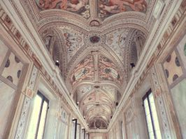 Mantua  Ducal Palace 03 by Ninelyn