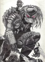 The Predator by Bayden-uk