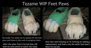 Tozame FeetPaws WIP by IceCatDemon