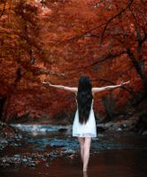 autumn dream by intels