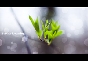 Spring is coming. by DoubbleD