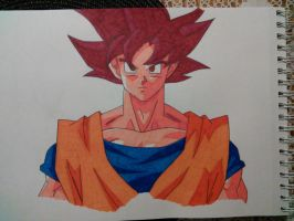 Super Saiyan God Goku by Naruto711