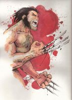 Watercolor Wolverine by KidNotorious
