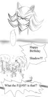 Shadow's unexpected B-day by AgentSkull