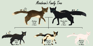 MoonBeam|Family Tree by WildAnimeKittyKat
