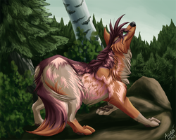 comission: scent of the wind by Nothofagus-obliqua
