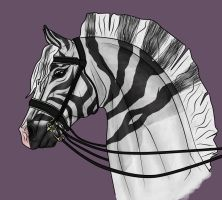 All Dressage-y by WB-Equine-Art
