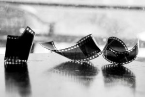 Film Negatives Black and White by Andrew-Bowermaster