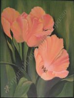 Apricot Tulips by KMAP3156