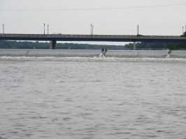 Dam by Windthin