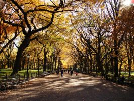 Central Park by Nisseth