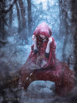 The story of the Little Red riding Hood by clair0bscur
