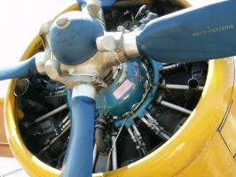 Wsk-Pzl-K PZL ASZ-62IR radial engine by RoadTripDog