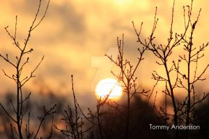 Sundown Harmony by TommyAndersson