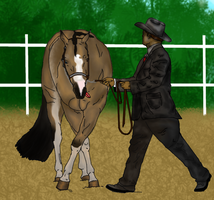 Chico Showmanship Entry by Starcather9