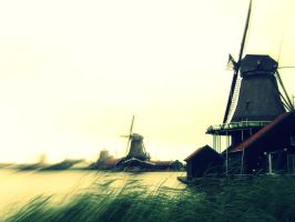 Windmills by sacadura