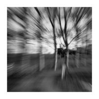 Fast trees I by michref