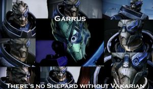 There Is No Shepard Without Vakarian (with words) by ShadowcatPrime
