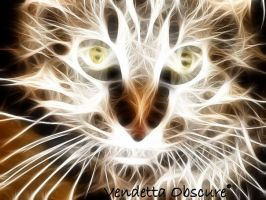 Kitty Cat by VendettaObscure