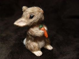 Rabbit with Carrot by TreasuredByU