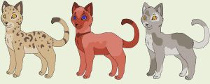 Oasis Adopts 4 by Addictivemind