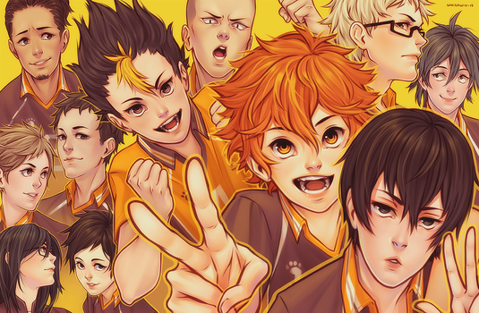 Haikyuu Karasuno by whispwill
