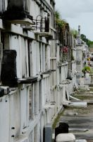 New Orleans Grave Yard One by MizzSamantha