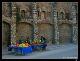 Fruits and Vegetables by erman-y
