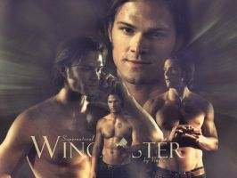 Sam Winchester by Nadin7Angel