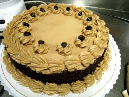 Chocolate Coffee Torte by asthetiq