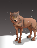 Russet Wolf Request by KanashiGD