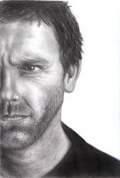 Dr House by desiry