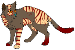 Free cat adoptable/ close by Keademia