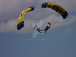 Navy Parachuters by DC4894