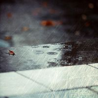 .It can't rain all the time by tgphotographer