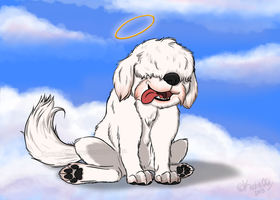 RIP Pup by Kuot