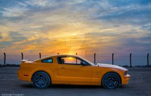 Mustang in the sunset by Mishari-Alreshaid