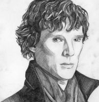 Sherlock by reverse-the-polarity
